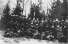 Dainavos apygardos partizanai