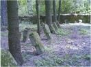 vokiečių karių kapai
