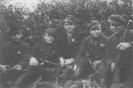 Nikodemo Liškausko-Beržo būrio partizanai