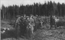 partizanų rikiuotė Šimonių girioje,