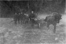 Antano Žilio-Žaibo laidotuvėse