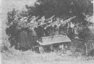 Povilo Gabrėno-Rimtučio laidotuvės